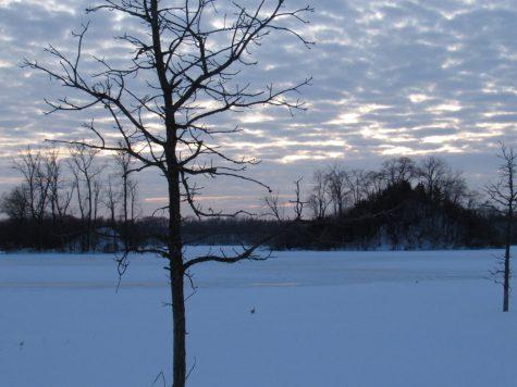 Sunset over Three Oaks Park
